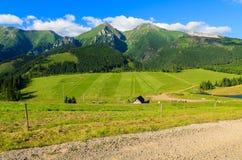 Härligt grönt sommarlandskap av Tatra berg i den Zdiar byn, Slovakien Fotografering för Bildbyråer