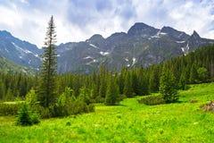 Härligt landskap i Tatra berg, Polen Fotografering för Bildbyråer