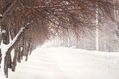 Härligt snöig vinterlandskap med banavägen Fotografering för Bildbyråer