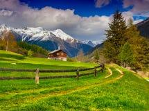 Härligt vårlandskap i de schweiziska fjällängarna Arkivfoton