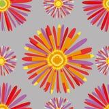 Hrysanthemum de ¡ de Ð Photographie stock