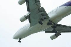 HS-TGB Boeing 747-400 av Thaiairway Royaltyfri Bild