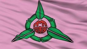 Hsinchu City Flag, Taiwan, Closeup View. Hsinchu City Flag, Country Taiwan, Closeup View Royalty Free Illustration