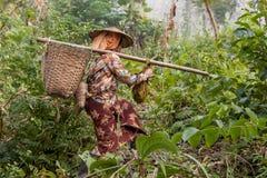 HSIPAW,缅甸- 2014年11月30日:Palaung妇女 库存图片