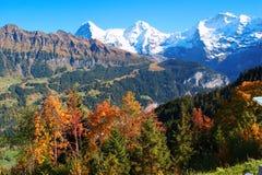Höst i bergen, alpsna, Schweitz Arkivbilder