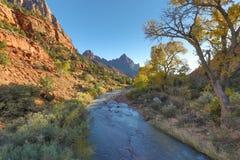 Höst i Zion National Park Royaltyfri Foto