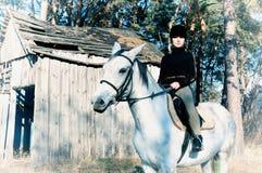 Häst och ryttare Arkivbilder
