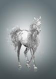 Häst och vatten Fotografering för Bildbyråer