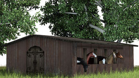 Hästar i ladugård - på vit bakgrund Arkivbild