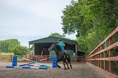 Hästbanhoppning Arkivbilder