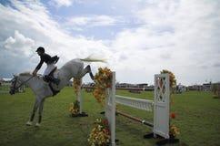 hästbanhoppningshow Royaltyfri Foto