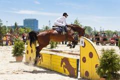 Hästbanhoppningshow Fotografering för Bildbyråer