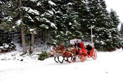 Hästbil i Abant sjön Royaltyfri Foto