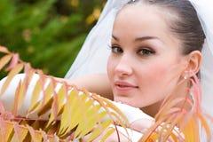 höstbröllop Royaltyfri Fotografi