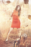 Hösten kommer med ut hennes nyckfulla sida Royaltyfri Fotografi