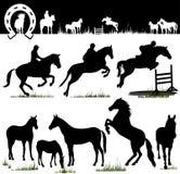 hästen silhouettes vektorn Arkivfoton