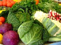 höstgrönsaker Arkivbild