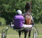 hästkapplöpningblockering Arkivfoton