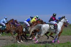 Hästkapplöpningen sprintar Royaltyfria Bilder