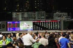 hästkapplöpningtvvägg Royaltyfri Foto