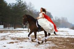 hästkvinna Arkivbilder
