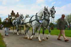 Hästlag och vagn Royaltyfri Fotografi