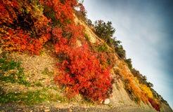 Höstliga berg Royaltyfri Fotografi