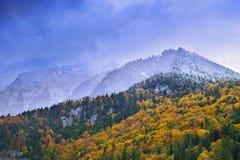 Höstliga berg av Lucern Arkivfoto