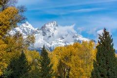 Höstliga färger i den storslagna Teton nationalparken Royaltyfria Bilder
