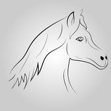 Hästlinje svart Arkivbilder