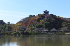 Höstlövverk i den Sankeien trädgården, Yokohama, Kanagawa, Japan Royaltyfria Foton