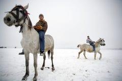 hästridningvinter Fotografering för Bildbyråer
