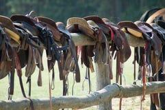hästsadlar Royaltyfri Fotografi