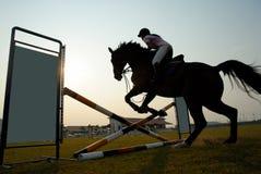 hästsilhouette Royaltyfria Bilder
