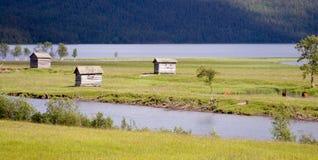 Hütten in der Sommer-Wiese im Dorf von Ammarnas Stockfotografie