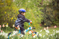 Http://www dreamstime com/royalty-free-stock-photos-child-bike-park-rides-image55467868 Royaltyfri Bild