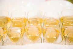 Huéspedes de abastecimiento del vino Imágenes de archivo libres de regalías