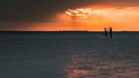 Huéspedes de la paleta en la puesta del sol en dominante largo Imágenes de archivo libres de regalías