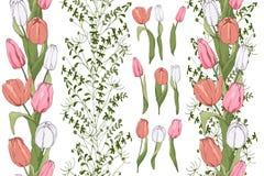 Huéspedes inconsútiles con los elementos del tulipán imágenes de archivo libres de regalías
