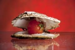 Huître avec la tomate Photographie stock libre de droits