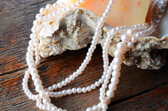 Huître Shell et collier de perle Image libre de droits