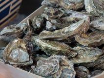 Huîtres à vendre au marché de fruits de mer images stock