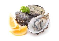 huîtres photographie stock libre de droits