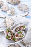 Huîtres avec le parmesan et les tomates cuites au four Photographie stock libre de droits