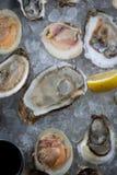 Huîtres crues fraîches sur la glace photographie stock
