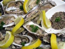 Huîtres délicieuses Images libres de droits