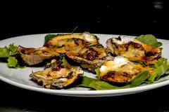Huîtres de Cajun sur la demi coquille Images stock