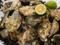 Huîtres et citron frais Photographie stock libre de droits