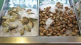 Huîtres et coquilles ouvertes d'aile sur la glace pour la vente Photos libres de droits
