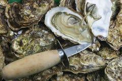 Huîtres et couteau frais photo stock